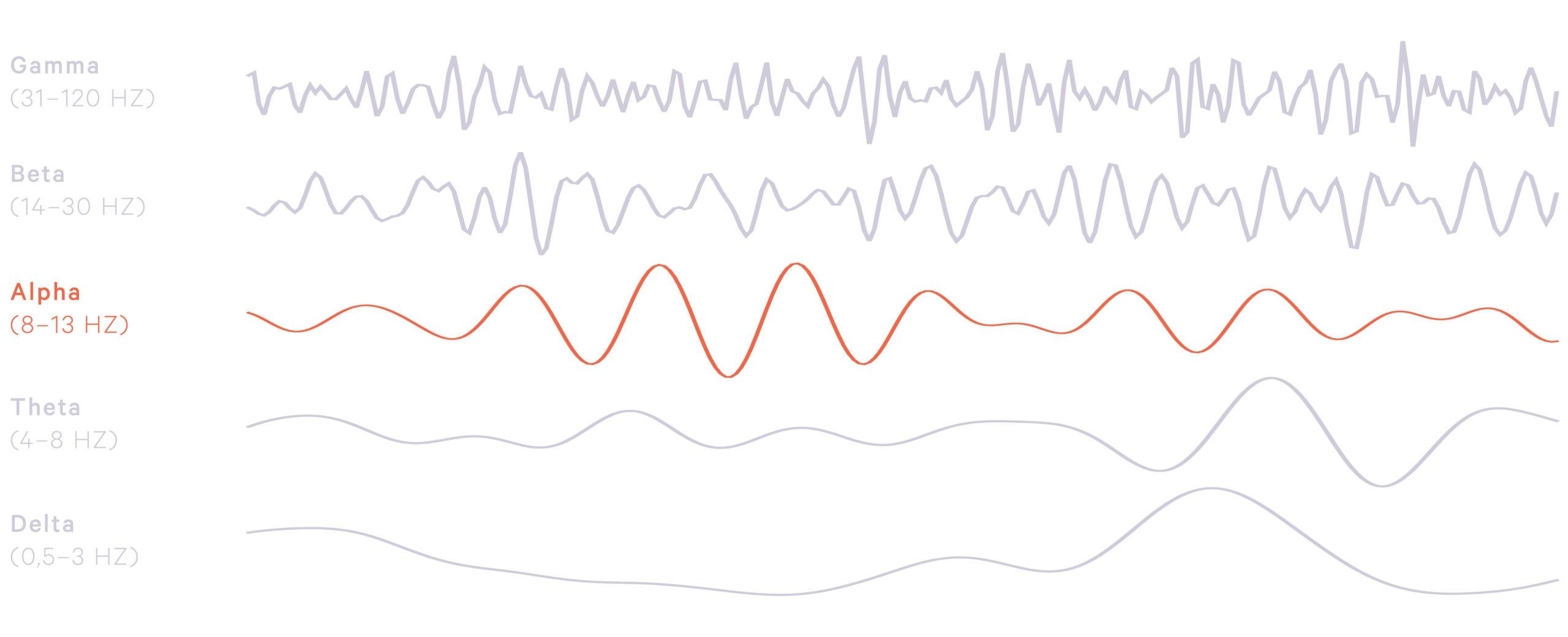 Frequenzen der Gehirnwellen